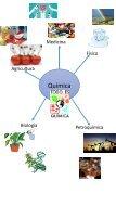 PIA_QUIMICA_41_pdf - Page 5