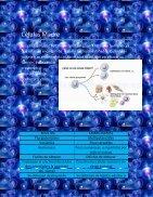 Trabajo integrador Celulas - Page 5