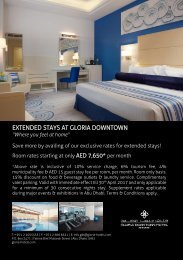 Extended Stays Flyer 2016-2017
