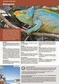 Indischer-Ozean.pdf - Seite 6