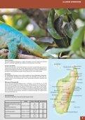 Indischer-Ozean.pdf - Seite 7