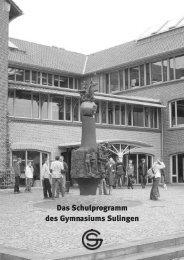 Schulprogramm - Gymnasium Sulingen