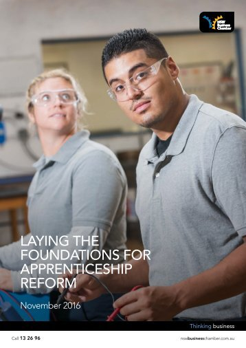 LAYING THE FOUNDATIONS FOR APPRENTICESHIP REFORM