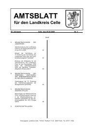Amtsblatt 03-2009 - Landkreis Celle