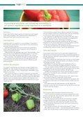 zymvwlu - Page 2