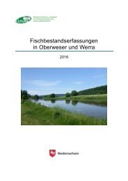 Fischbestandserfassungen in Oberweser und Werra