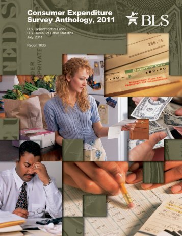 Consumer Expenditure Survey Anthology, 2011 - Bureau of Labor ...