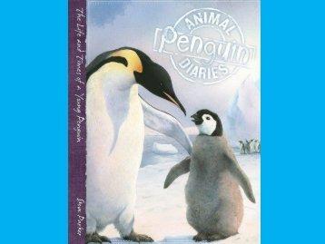 Animal Penguin diaries