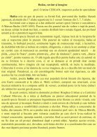 Revista-de-Haiku (1) - Page 4