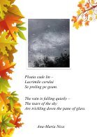 Revista-de-Haiku (1) - Page 6