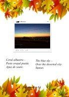 Revista-de-Haiku (1) - Page 7