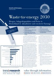 Waste-to-energy 2030 - trend:research