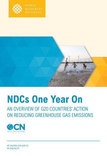 NDCs One Year On