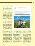 Revista Visão nº 5 - Page 7