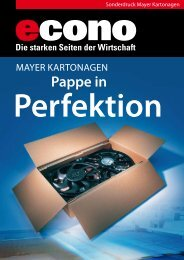 Perfektion - Mayer Kartonagen