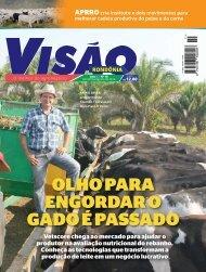Revista Visão nº 10