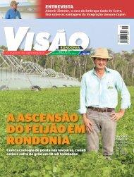 Revista Visão nº 11