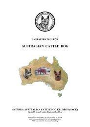 AUSTRALIAN CATTLE DOG - wildartnet