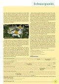 20 Jahre Ö GPh yt - bei PHYTO Therapie - Seite 5