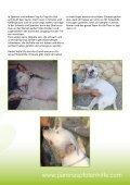 PARENAS Newsletter 10-2015 - Seite 4
