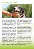 PARENAS Newsletter 10-2015 - Seite 5