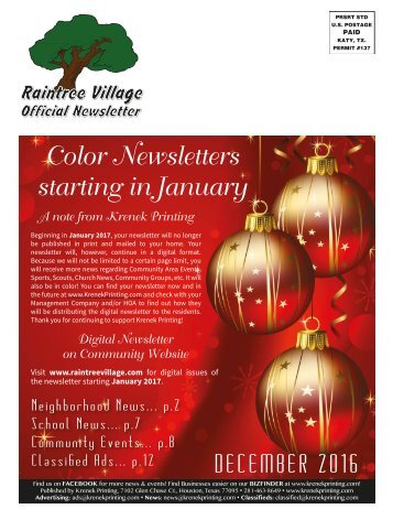 Raintree Village December 2016