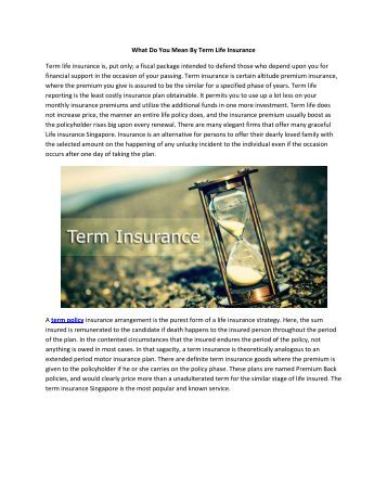What Do You Mean By Term Life Insurance