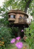 Blue Forest Luxury Tree House Brochure 2016 - Page 4