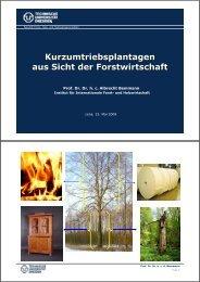 Kurzumtriebsplantagen aus Sicht der Forstwirtschaft