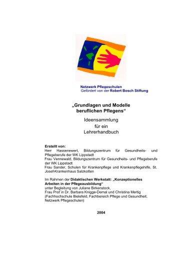 Grundlagen und Modelle beruflichen Pflegens - QuePNet ...