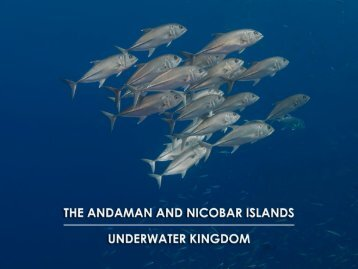 Andaman and Nicobar islands Underwater Kingdom book Concept High Res