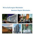 Wirtschaftsregion Wiesbaden - Seite 5