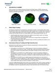 Inmarsat GADSS Solutions - Page 3