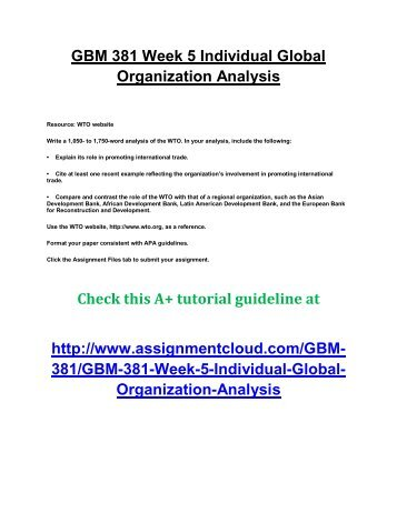 UOP GBM 381 Week 5 Individual Global Organization Analysis