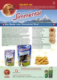 Simmental Flyer_red