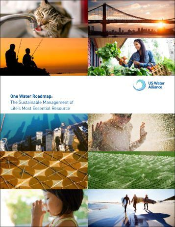 One Water Roadmap The Sustainable Management of Life's Most Essential Resource