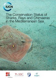 The Conservation Status of Sharks Rays and Chimaeras in the Mediterranean Sea