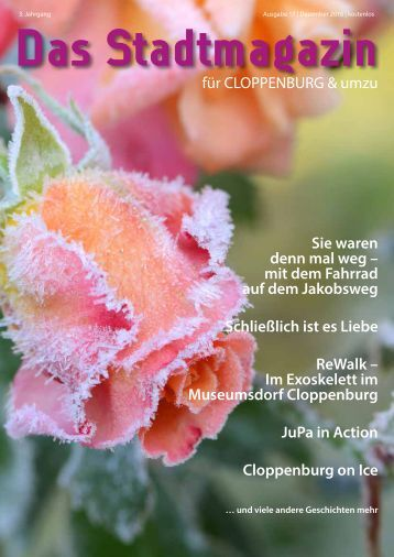 Stadtmagazin_17_low