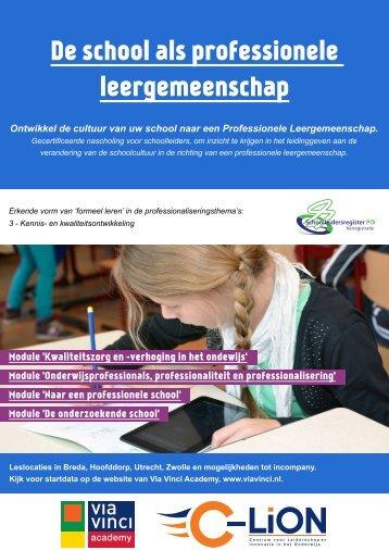 De school als professionele leergemeenschap