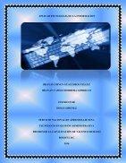 APLICAR TECNOLOGÍAS DE LA INFORMACION - Page 3