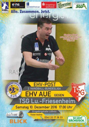 EHV Aue gegen TSG Ludwigshafen-Friesenheim