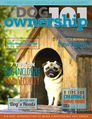 Dog Ownership 101 - November/December 2016