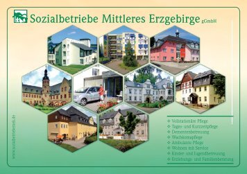 Sozialbetriebe Mittleres ErzgebirgegGmbH