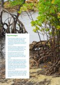 Mangrove restoration to plant or not to plant? - Page 2