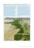 Mangrove restoration to plant or not to plant? - Page 7