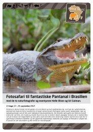 FotosafariFantastiskePantanalBrasilien_3