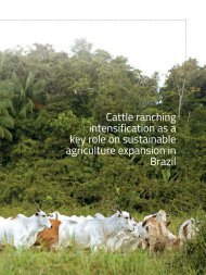 Cattle-ranching-intensification-as-a-key-role-on-sustainable-agriculture-expansion-in-Brazil_Agroicone_INPUT