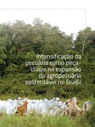 Intesificação-da-pecuária-como-peça-chave-na-expansão-da-agropecuária-sustentável-no-Brasil