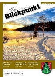 Blickpunkt 4-2016 Web