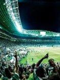 Palmeiras 2016 - A trajetória de um campeão - Page 2